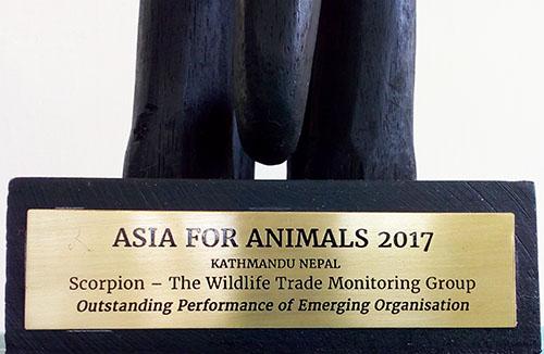 Animals Asia's Indonesian partner (Scorpion) wins prestigious award for uncovering animal abuse (December 14, 2017)