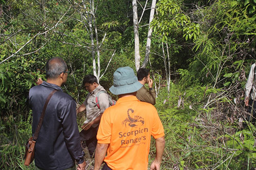 Joint Patrol to Protect Tapanuli Orangutan in Batangtoru Ecosystem (March 30, 2019)
