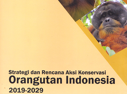 Document of Strategy and Action Plan for Indonesian Orangutan Conservation 2019-2029 is Launched (August 12, 2019)